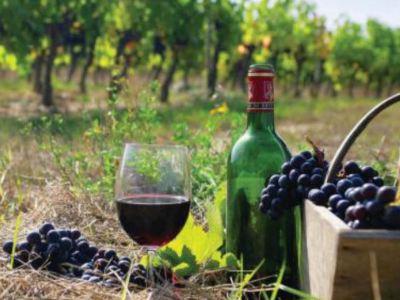 Հայկական գինիները համտեսեցին Վաշինգտոնում. Ամերիկյան շուկան հայերի համար նպաստավոր կլինի 1-2 տարի անց
