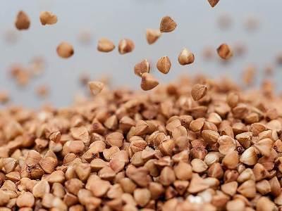 Учёный: В Араратской долине гречку можно сеять даже дважды в год