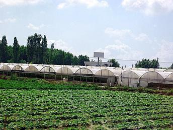 В Армении в 2018 году будет выдано 2100 субсидированных сельхозкредитов на 9,4 млрд. драмов