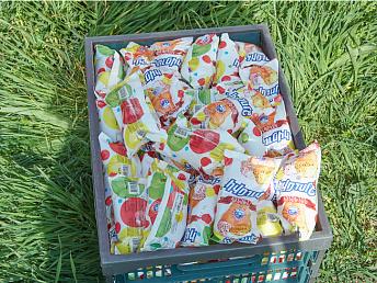 Армянский регулятор приостановил реализацию мороженого, в котором обнаружен стафилококк
