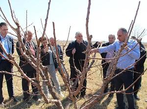 «Պտղատու ծառերի էտ և ձևավորում» թեմայով խմբային դասընթաց Արմավիրում