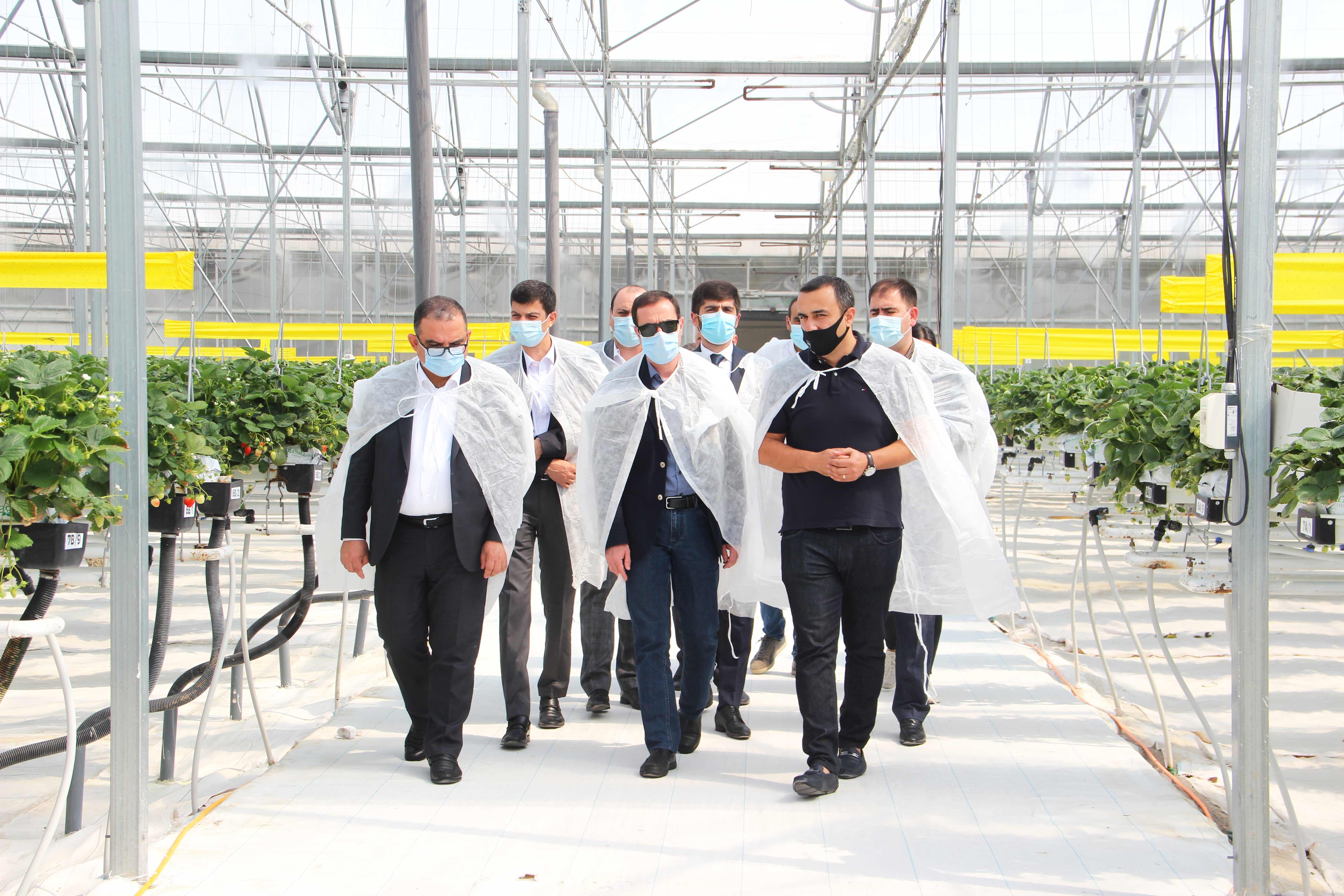 Տիգրան Խաչատրյանը և ԱՀ գյուղնախարար Աշոտ Բախշիյանն այցելել են ժամանակակից սարքավորումներով հագեցած ջերմատնային տնտեսություն և «խելացի» անասնաշենք