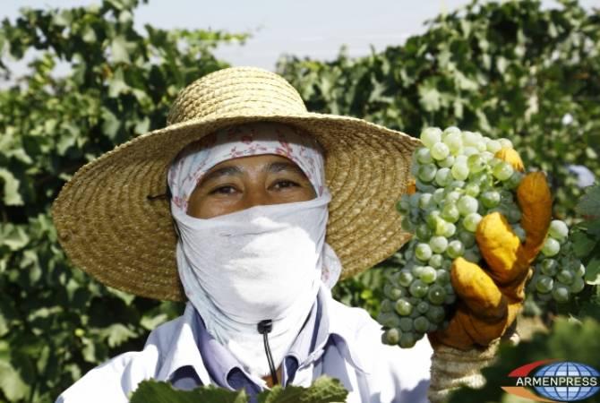 Այսուհետ գյուղապահովագրության ծրագիրը կգործի հանրապետության բոլոր մարզերում