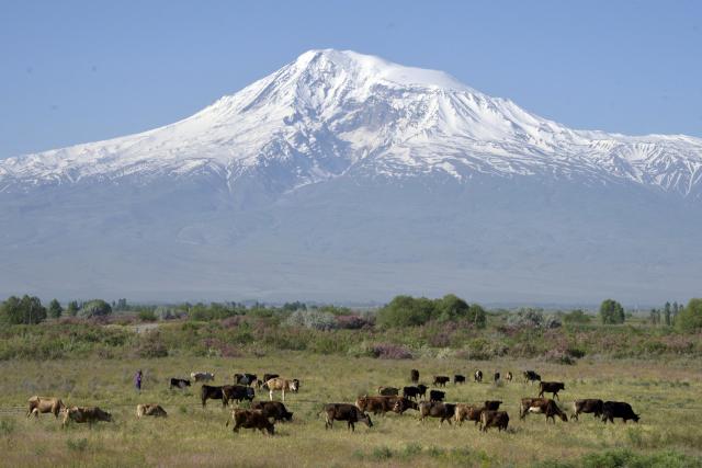 FAO- ն հրատապ օգնություն է տրամադրում Հայաստանում հակամարտությունից տուժած մարդկանց