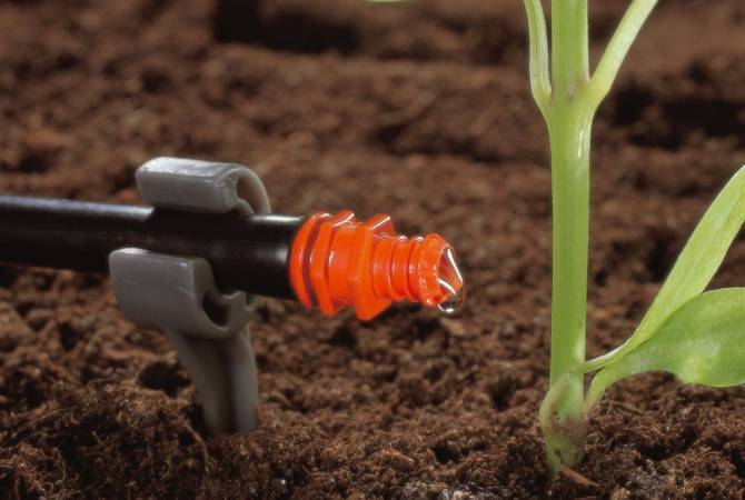 Ջրի խնայում, բերքի որակի բարձրացում. պետությունը խրախուսում է ոռոգման արդիական համակարգերի ներդրումը