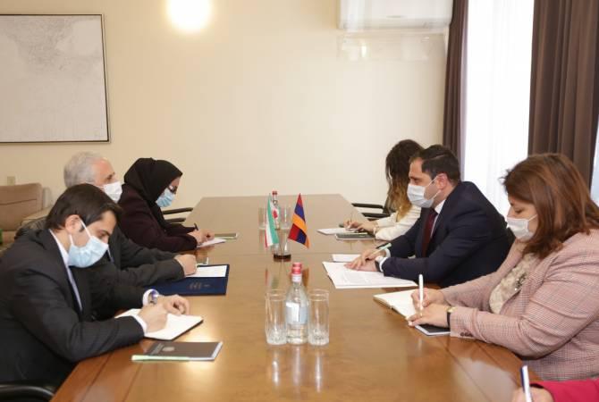 ՀՀ ՏԿԵ նախարարը և ԻԻՀ դեսպանը քննարկել են միջկառավարական հանձնաժողովի 17- րդ նիստի օրակարգը, համատեղ ծրագրերը