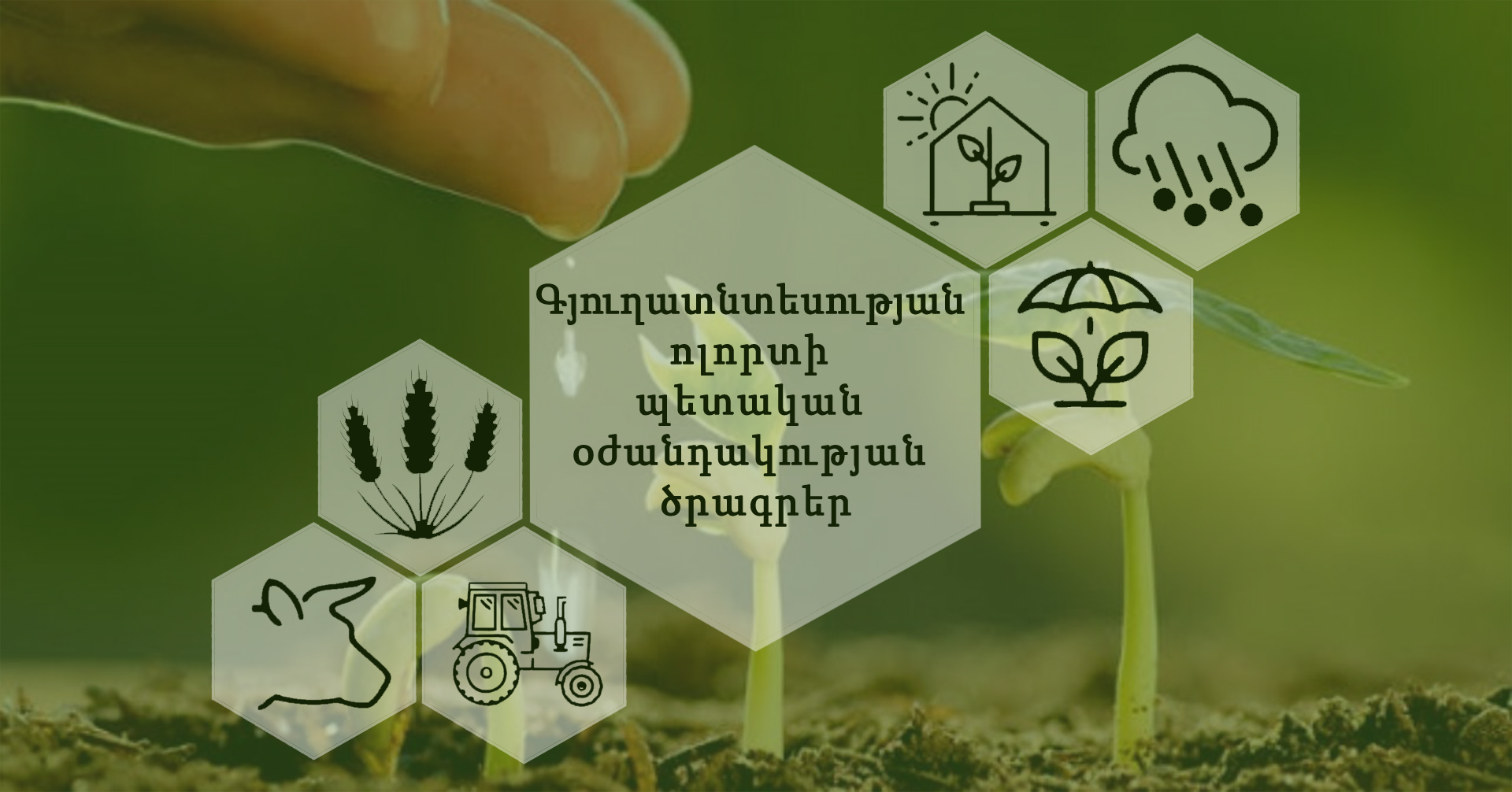 Ամփոփվել են գյուղատնտեսության ոլորտի պետական աջակցության ծրագրերը